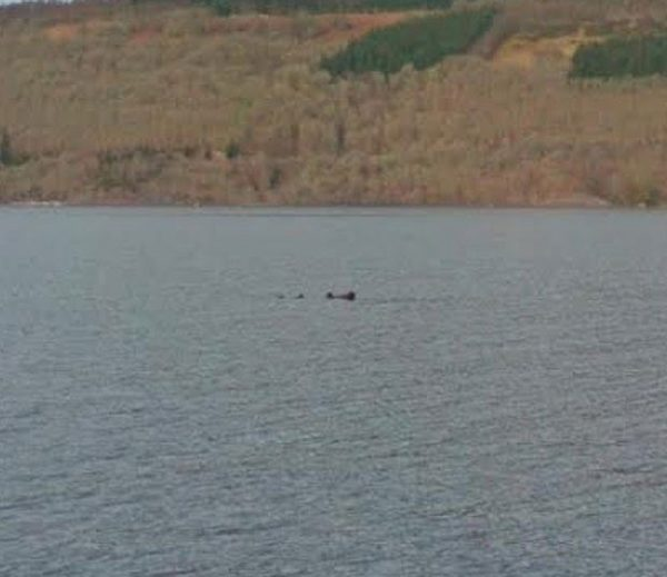 Image 1 : Loch Ness : Nessie chassée aussi dans Street View