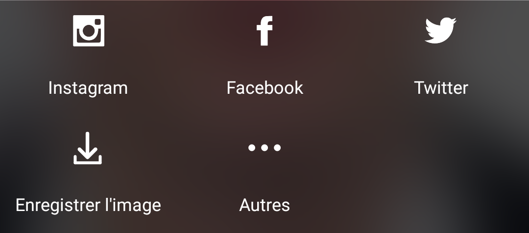 partage photo selfie instagram facebook snapchat twitter